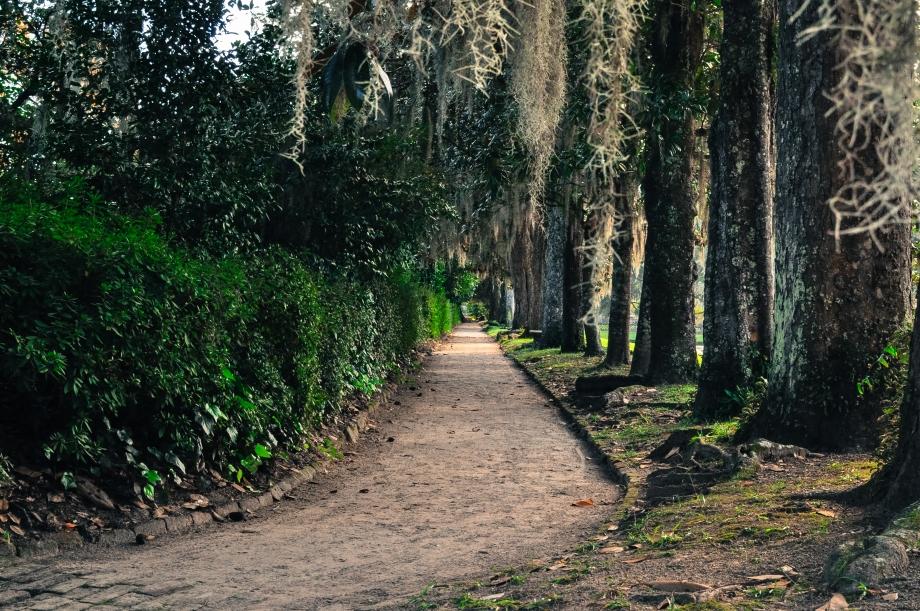 Middleton Path