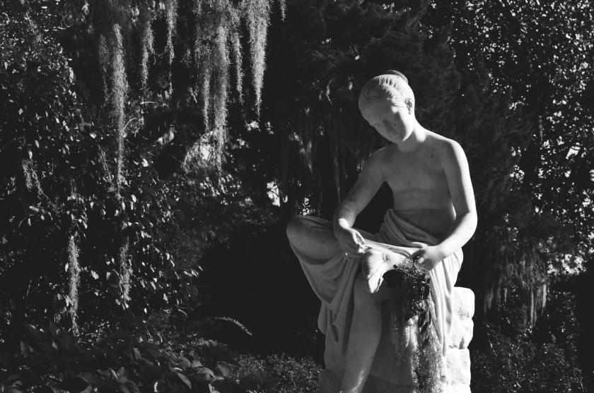 The Garden Boy