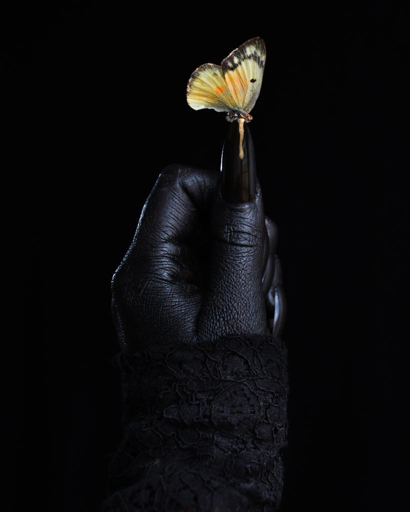 Butterfly Dark